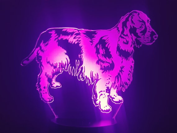 DOG SPRINGER SPANIEL English - mood lamp 3D led, laser engraving on acrylic, power by usb cable or batteries