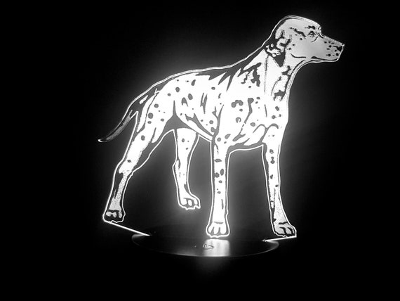 DALMATIAN dog - Mood lamp 3D led, laser engraving on acrylic, power by USB cable or batteries