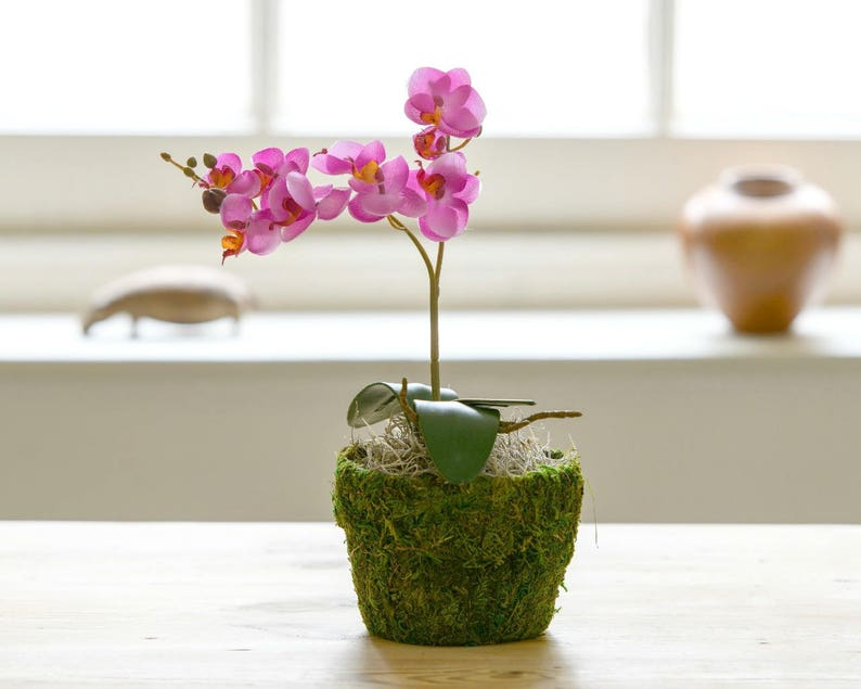 Faux Deep Pink Apricot Orchid Hand Potted Plant Artificial Etsy