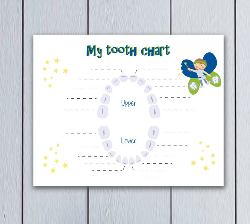 image about Baby Tooth Chart Printable identify Enamel Fairy Dropped Teeth Chart boy Prompt Obtain / printable pdf / free 1st milk enamel pillow small children youngsters background day dates desk blue