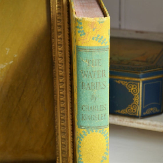 Vintage Book,  The Water Babies by Charles Kingsley, Vintage Childrens book, Childs Story Book