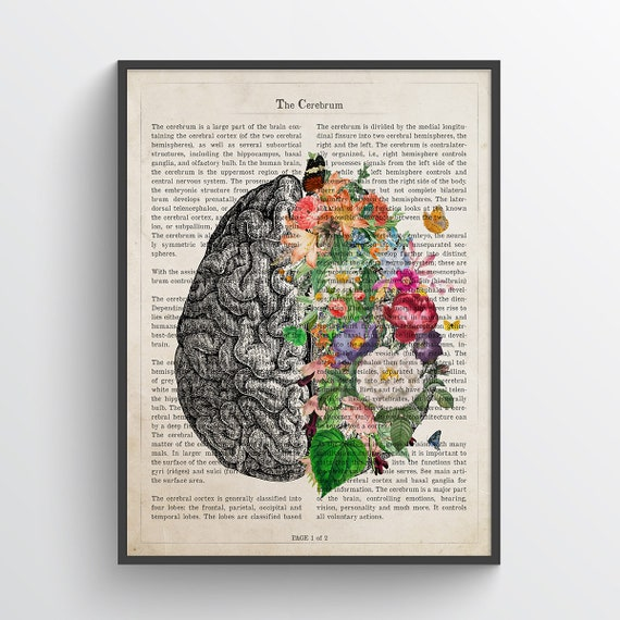 Medical School Student Graduation Gift Medical Student Gift Neuron Custom Frame Anatomy Medical Gift for Brain Doctor /& Surgeon