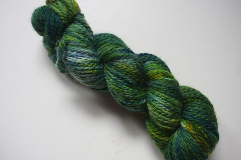 Aran  100% British Bluefaced Leicester superwash yarn Pine image 0