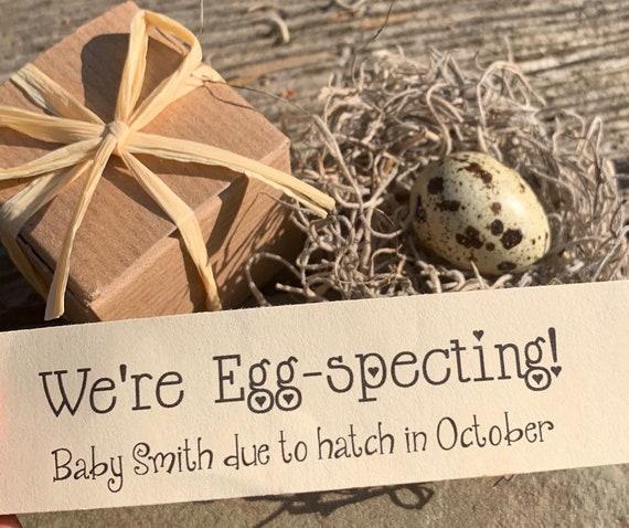 Surprise Quail Egg Pregnancy Announcement