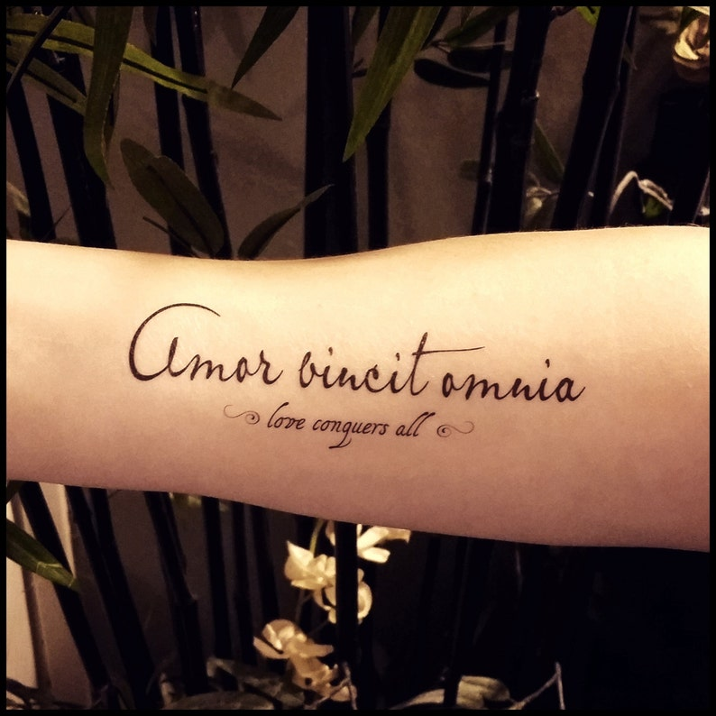 Love Conquers All Tattoo Quote Temporary Tattoo Fake Tattoo Etsy
