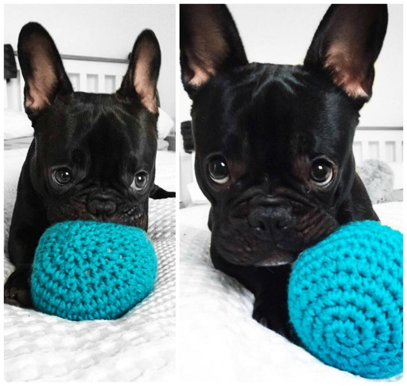 BEST Seller  UNPOPPABLE Ball  Dog Toy  Durable Dog Toys image 0