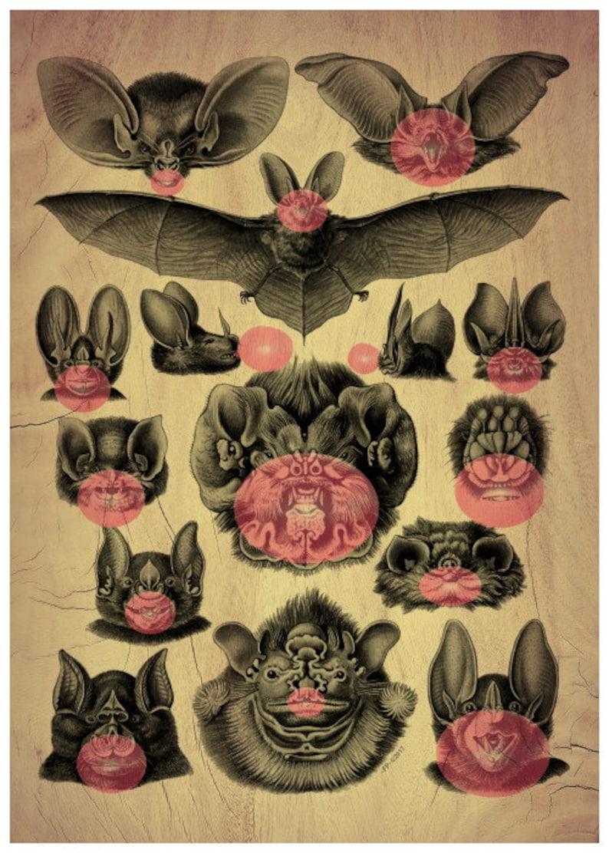 Bubble gum Kitcsh Bats Blowing Bubbles Wood Effect Print Absurd Curiosity Surrealism