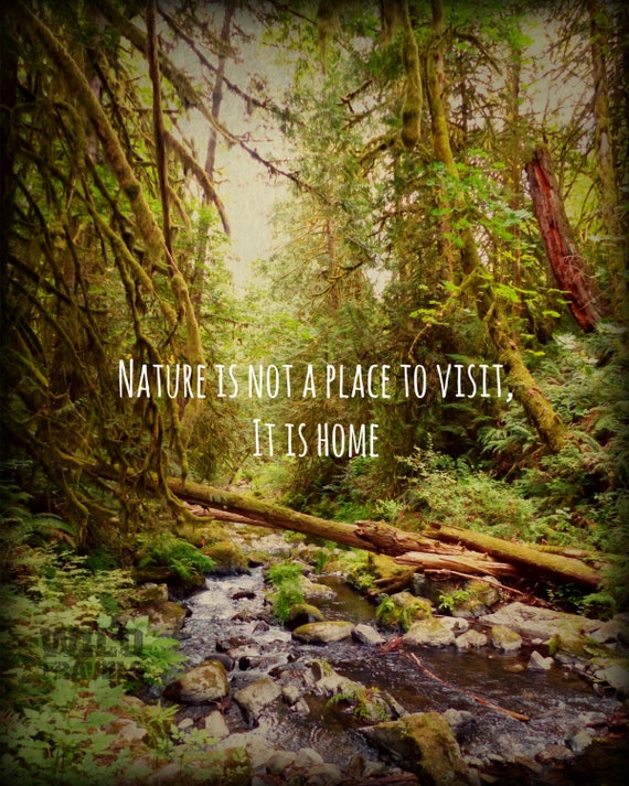 Photo Art Block Forest Photography Inspirational Quote Wood Wall Art Landscape Art Print Rustic Cabin Decor Nature Lover Gift