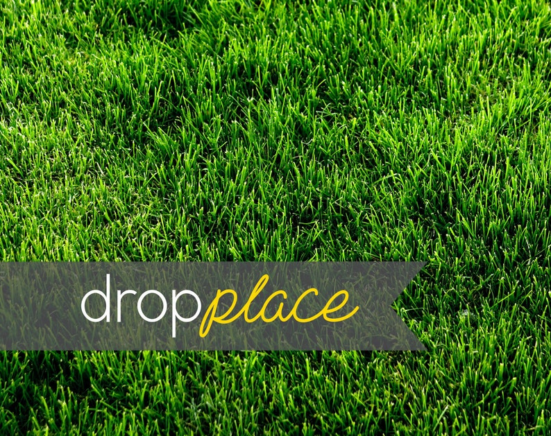 Material and Size Options Available Backdrop Grassy Knoll Photo Background