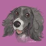 Custom Digital Pet Sketch by Sketchbuck DIGITAL FILE ONLY. Dog, Cat, Horse, Rabbit, Rat, Small animal, gift.