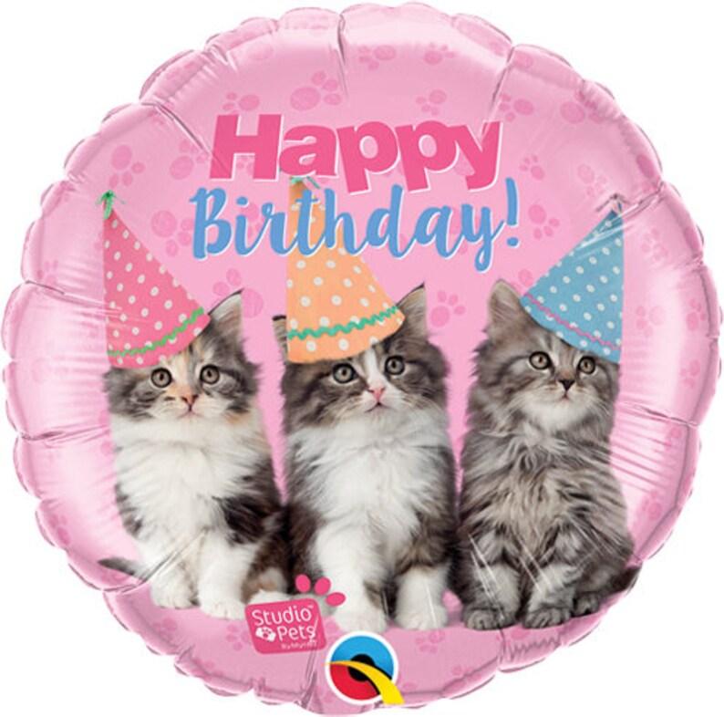 Kitten Happy Birthday Balloon Cats Cat