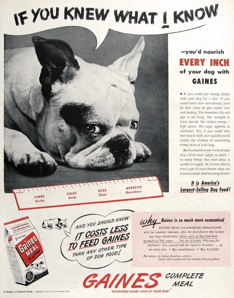 1950 Gaines Meal Dog Food Puppies Vtg Print Ad Advertising-print