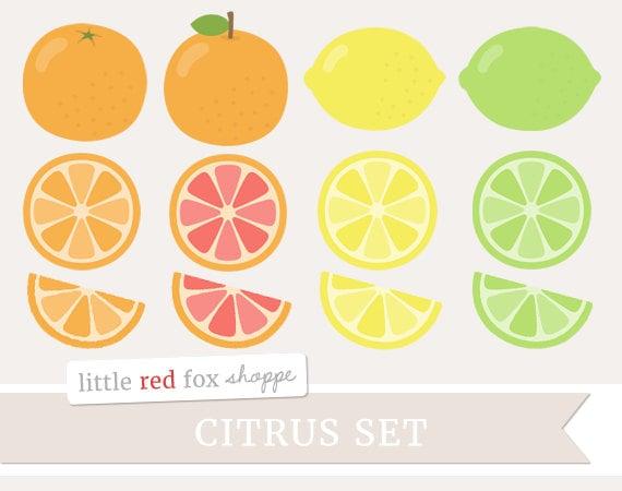 Citrus Fruit Clipart Fruit Clip Art Lemon Clipart Orange ...
