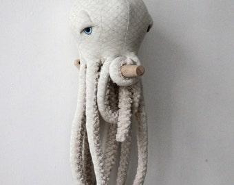 Petite Pieuvre Albinos