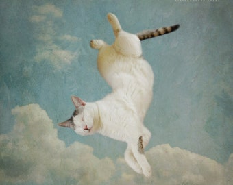 Surreal cat photo. Fine art photograph. Whimsical animal portrait. Bedroom wall art, kid's room. Clouds, painterly. Dreaming of Tiepolo