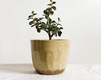 Desert Indoor Ceramic Planter, medium clay planter, succulent planter