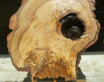 Driftwood Sculpture,
