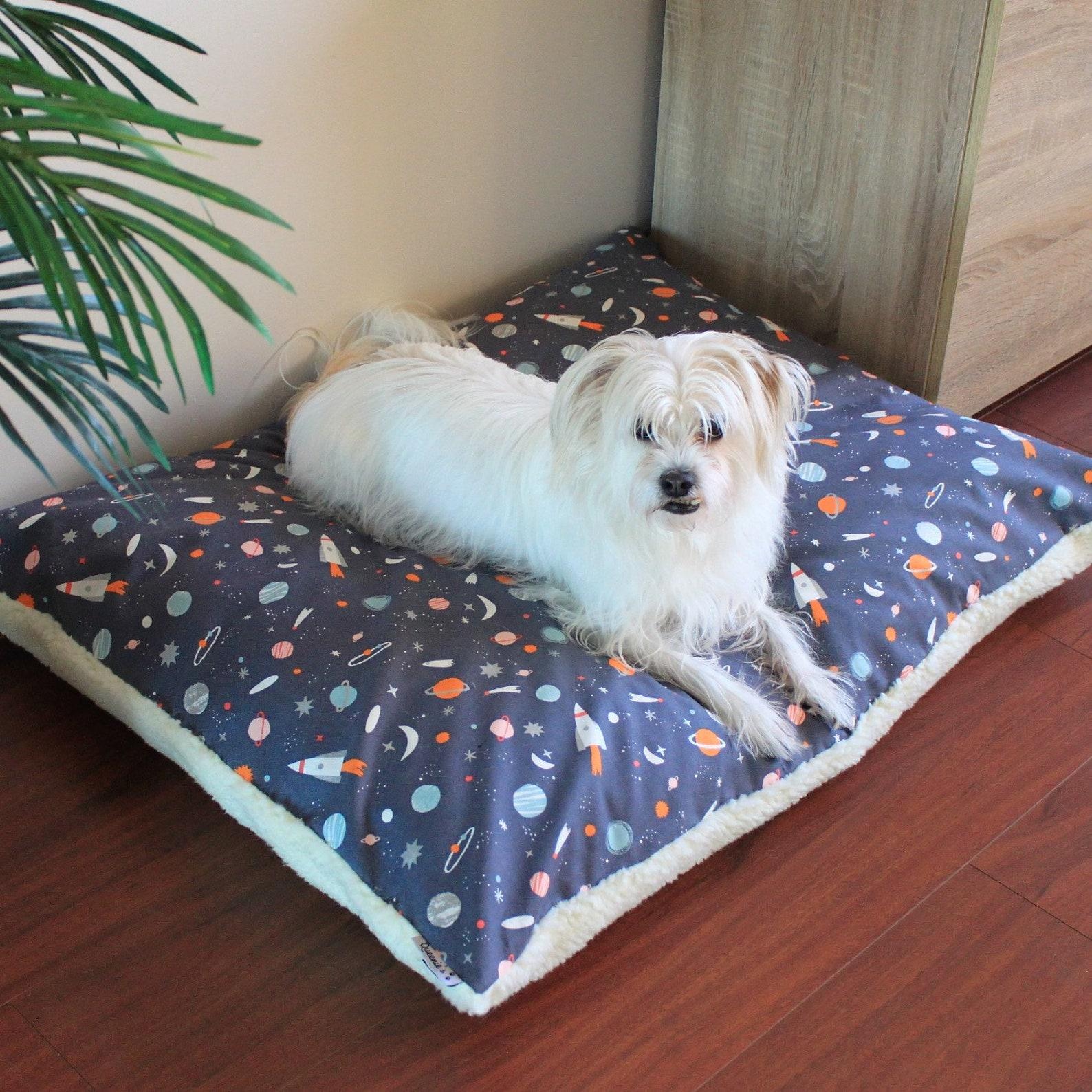 Dog posing on cushion pet bed