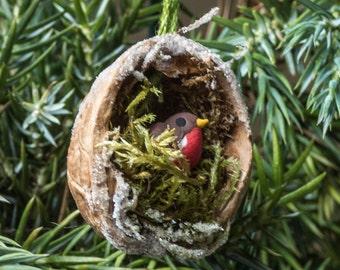 Christmas Walnut Shell Decoration: Robin