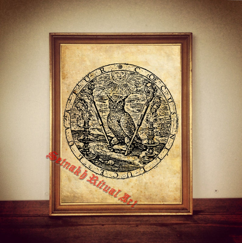 Owl print, Alchemical poster, Occult knowledge, antique paper, canvas,  gnostic, hermetism, wiccan, witchcraft, magick, wise Owl symbol #85