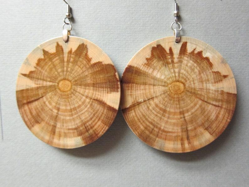 X Large HUGE Circle Exotic Wood Earrings Monkey Puzzle image 0