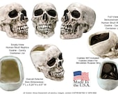 7 Inch Human Skull Zombie Skeleton Head Replica Aged Relic Ceramic Candy Cookie Jar Statue Figurine Kitchen and Dining, Made in USA