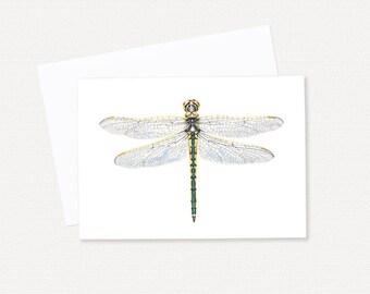 Australian Emerald Dragonfly - Australian Greeting Card - Blank Gift Card
