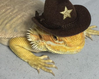 Dragon Wings and Things Brown Cowboy Hat