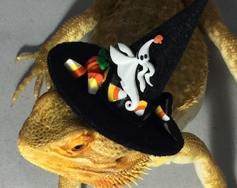 Dragon Wings and Things Halloween Witches Hat