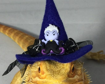 Dragon Wings and Things Bearded Dragon Witches/ Halloween Hat