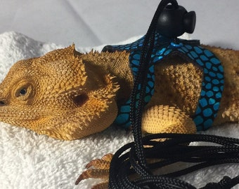 Dragon Wings and Things Adult Bearded Dragon Harness