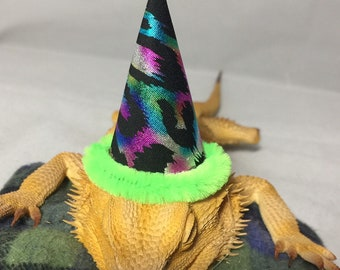Dragon Wings and Things Bearded Dragon/ Snake/ Gecko/Rat Birthday Hat