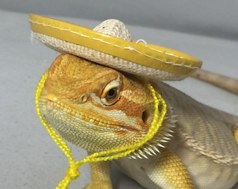 Dragon Wings and Things Sombrero Hat
