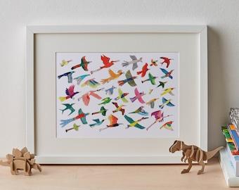 The Grey Go-Away Birds Giclée Print