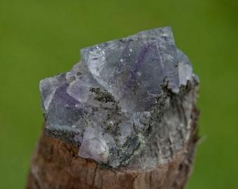 fluorite phantom