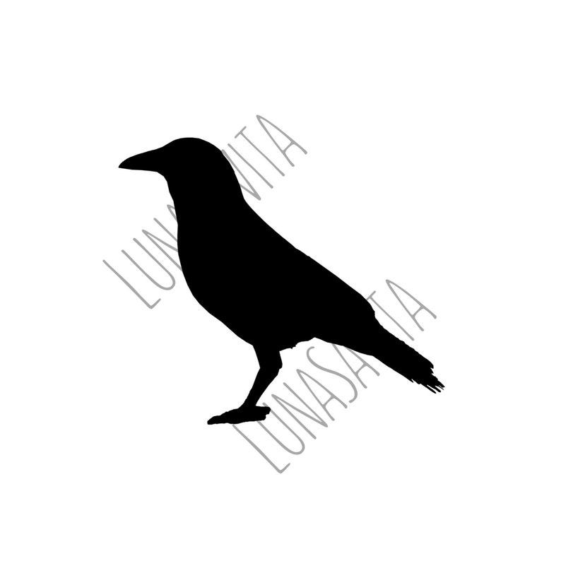 Halloween Crow SVG DXF Files for Cricut Design Space image 0