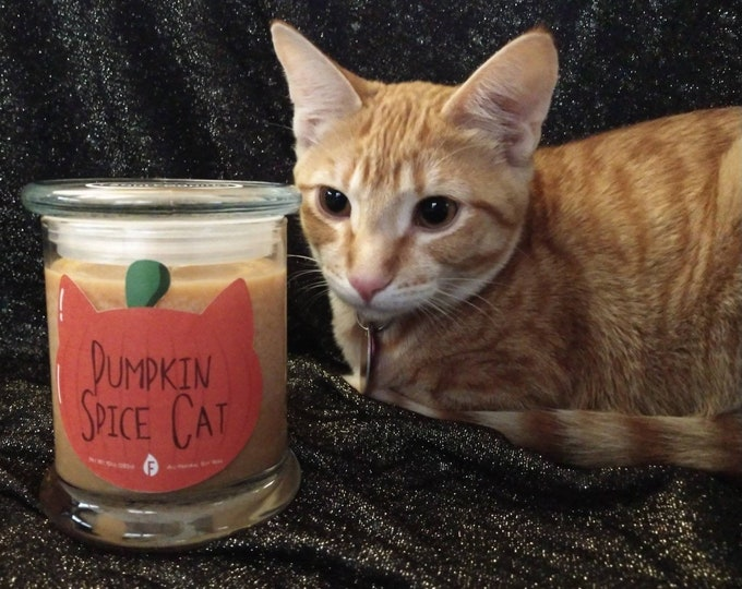 Pumpkin Spice Cat candle