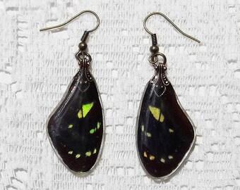 Butterfly Earrings - Fairy Accessories - Black and Yellow Butterfly Jewelry - Dangle Earrings - Fairy Jewelry - Dandelion Dream