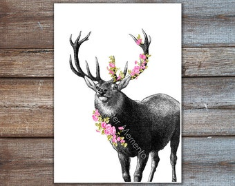 Deer with Flowers - Deer Cherry Blossoms Poster, Print, Wall Art for Home, Office, Childrens Room Decor
