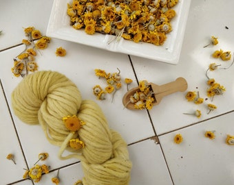 Dyer's chamomile dried flowers for natural dyeing wool. Anthemis tinctoria plant to dye yarn, fabric ecoprinting supply harvested in Italy