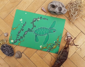 Baby sea turtle greetings card