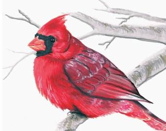 Cardinal Card Set