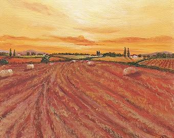 After Harvest II