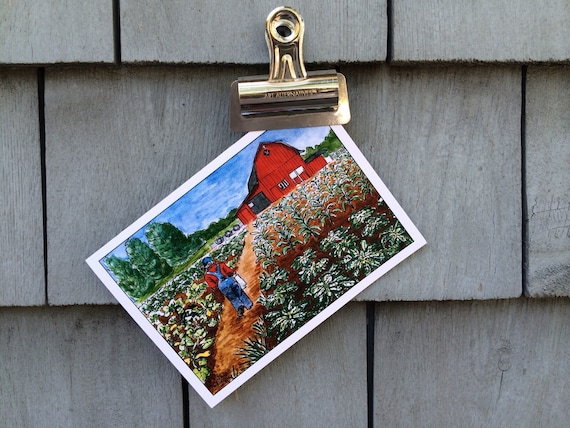Garden Barn Greeting Card, 5 x 7 (A7), blank inside