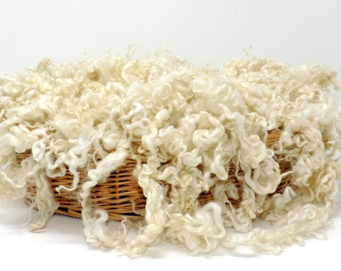 Gotland Lamb Fleece White Washed 4 Inch Curly Locks for Felting Embellishment Lockspinning 1 oz Art Batts Doll Hair Santa Beard Add Ins
