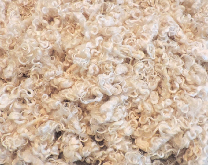 Leicester Longwool, Natural White, Washed Wool Fleece, 3-4 Inches, Curly Locks, Santa Beards, Gnomes, Dyeing, Felting, Doll Hair, Spinning,,