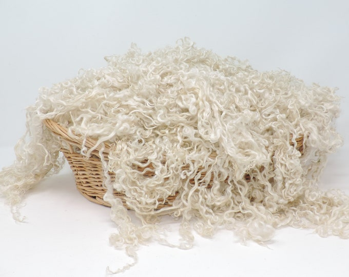 2.5 oz Teeswater Lamb Wool Fleece, Natural White, Washed, up to 5 Inches, Curly Locks, Felt, Spinning, Doll Hair, Beards, Gnomes, Weaving