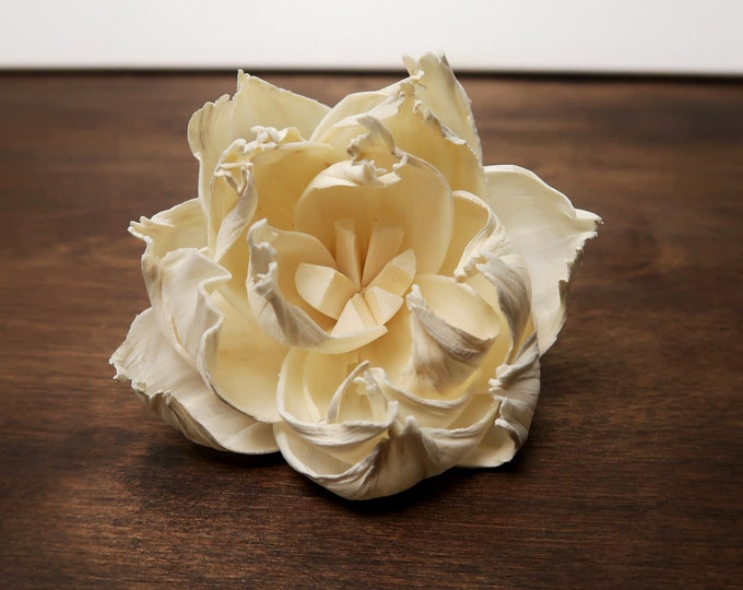Peony sola flower, Wedding decor diy bouquet supply, organic wooden floral supply, 15 pcs 6cm table party decor