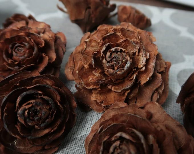 Natural cedar roses 24pcs