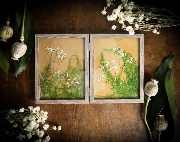 Real preserved pressed flowers picture, botanical artwork mother's day gift idea, glass frame art garden herbarium, ferns framed, oshibana